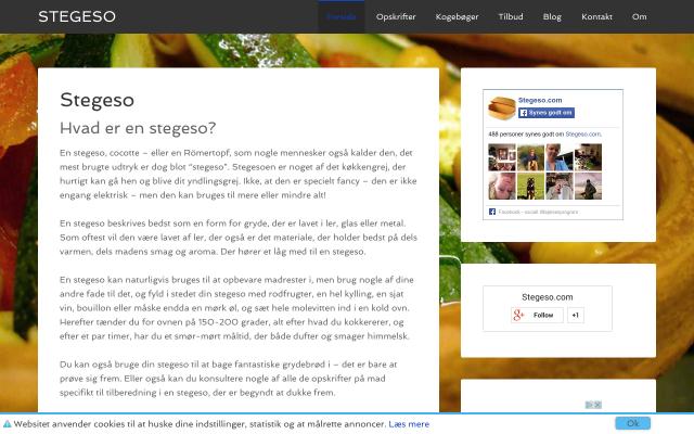 www.stegeso.com